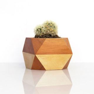 Tōtara Succulent Pot — Gold