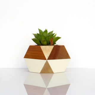 Succulent Pot — Gold + White