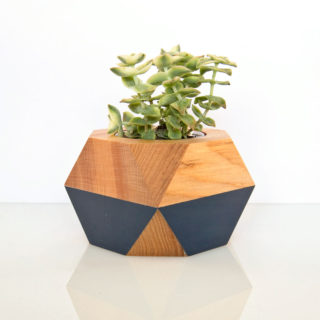 Succulent Pot — dark blue