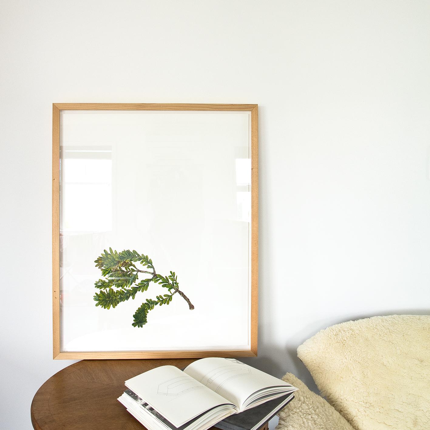 Prints and Display
