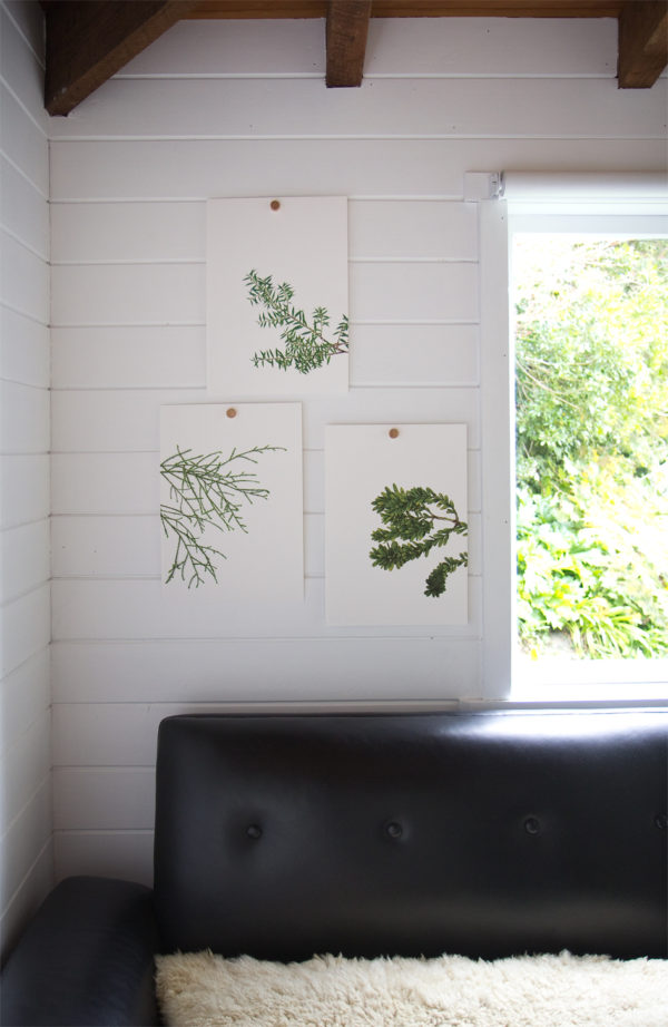 Botanical prints A3